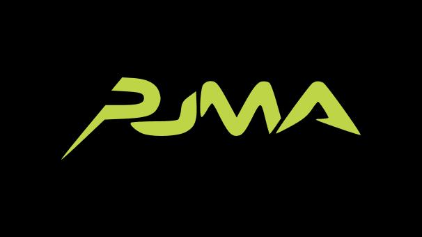 puma brandbook image